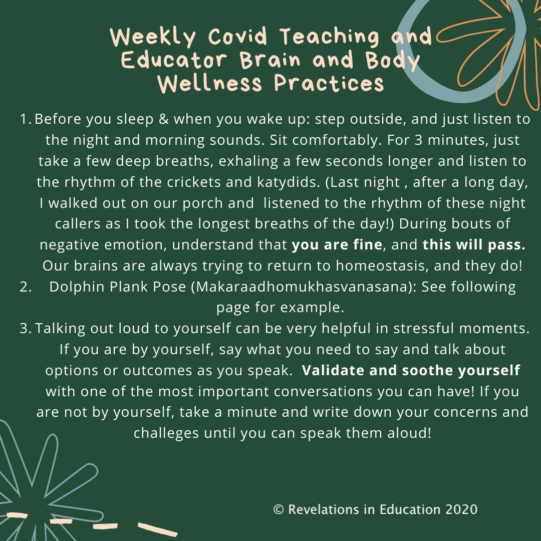COVID Teaching Practices Addressing Well Being for Educators and Parents