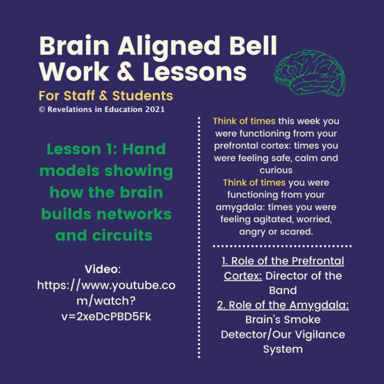 © Brain Aligned Lessons 1