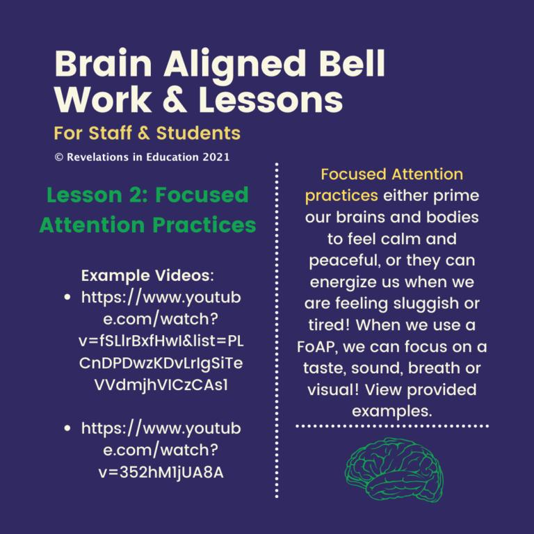 © Brain Aligned Lessons 2