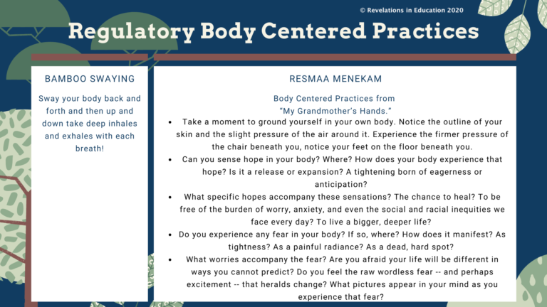 © Regulatory Body Centered Practices 6