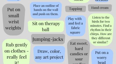 © Sensory and Nervous System Practices for Calm and De-escalation - Menu 2
